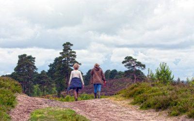 Pourquoi la randonnée pédestre est bonne pour la santé?